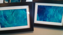 Framed Studies 1