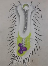 "Gastrotricha - Pastel on Magnani Pescia Paper 30"" x 22"""