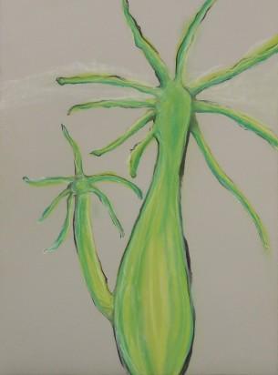 "Hydra Viridissima - Pastel on Magnani Pescia Paper 30"" x 22"""