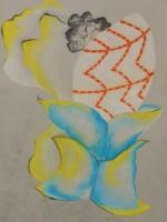 """Micromelo Undatus - Pastel on Magnani Pescia Paper 30"""" x 22"""""""