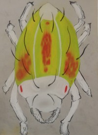 "Tetranychus Urticae - Pastel on Magnani Pescia Paper 30"" x 22"""